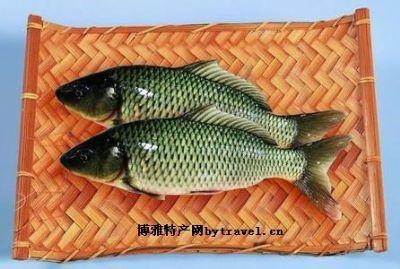 孟津黄河鲤鱼