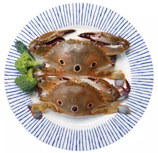 红星梭子蟹