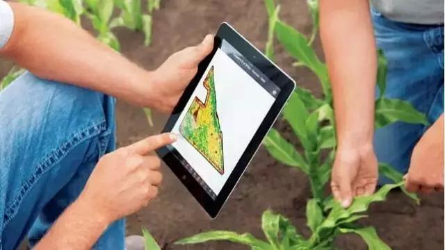 """看看美国的""""互联网 农业"""""""