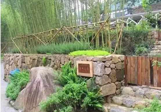 】 当地材料+乡土植物,利用原有地形打造的生态自然景观.-乡村